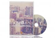 Bedruckte DVD mit DVD Box und Inlay